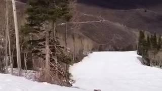Snowboarder fails to clear a no jumping sign - Video