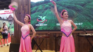 Wonderful folk dance by very beautiful Vietnamese dancer  - Video