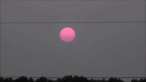 Gorgeous Pink Sun Setting Into Forest Fire Haze