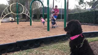 I wanna go play too!  - Video