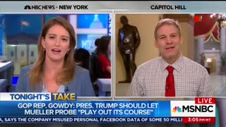 Rep. Jim Jordan slams MSNBC's Katy Tur in interview - Video
