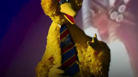 Did You Know Big Bird Was Almost Killed in Space