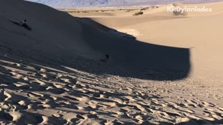 Two guys surf down sand dunes and fall down - Video