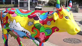 """Compilation of images """"Cow parade""""  - Video"""