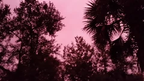 Sky Turns Neon Pink After Hurricane Michael