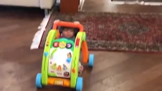 Collab copyright protection - baby boy pushes cart falls on him