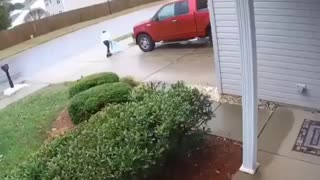 You all look at my little sister running away from these dogs - Video
