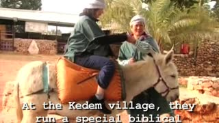 Worst Present Ever? Donkey Dung - Video
