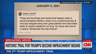 Cicilline On Trump Impeachment