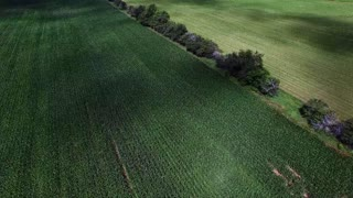 Farm Country Filmed By Drone - Video