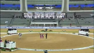 Free Style Performance On A Horse - Video