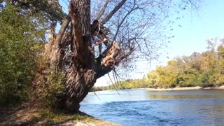 Rope swing Fail of the Century - Video