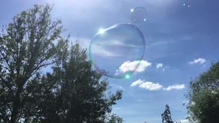 Beautiful Big Bubbles in a garden with music  - Video