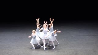 OH! FUNNY BALLET WITH SWANS - Video
