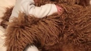 A cute baby with a dog