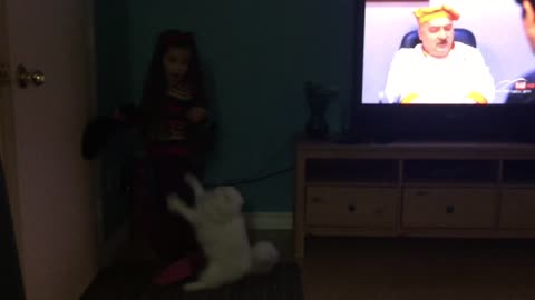 Cat jumping on a girl