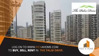 The Palm Drive Gurgaon - Video