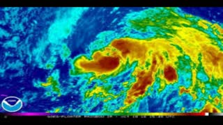 Hurricane Nicole Gears Up, Could Hit Bermuda - Video