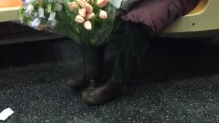 Glasses woman prunes flowers on subway