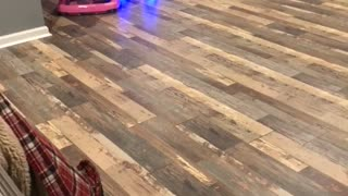 Hoverboard Powered Baby Racing