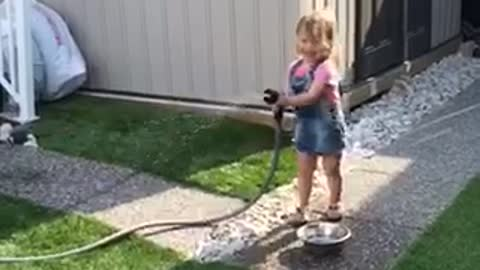 Little girl entertains French Bulldog with water hose