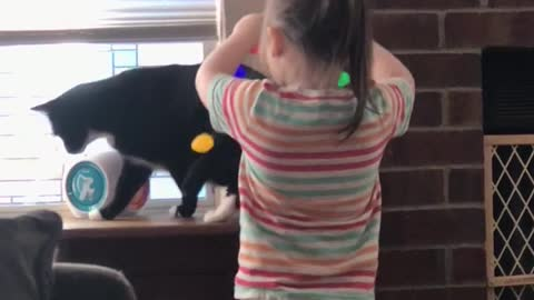 Little girl decorates cat with Christmas lights