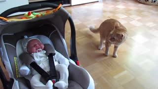 👶1st time Meeting Cats and Babies 🚼