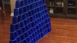 Adorable Kitty Scores Perfect Game In Living Room Bowling - Video