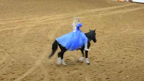 Mustang And Cinderella Perform Without Bridle