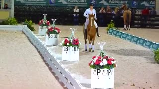 Magical Performance At The Adequan Global Dressage Festival - Video