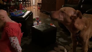 Cute Little Girl Teaches Big Dog To Howl - Video