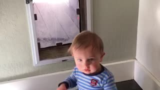 Toddler and the Magic Doggie Door