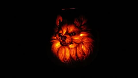 Veterinarian Creates A Realistic Dog-O-Lantern Pumpkin Carving