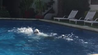 Guy swimming in pool with snorkel and flippers