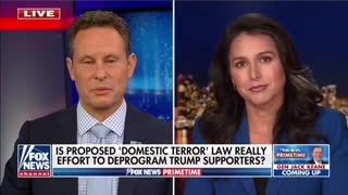 Tulsi Gabbard Issues Warning About Domestic Terrorism Bill