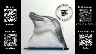 Penguin headshot drawing time lapse