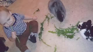 Snack time! Baby sweetly enjoys treats with bunny rabbits