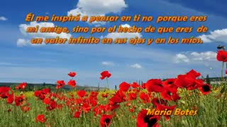 las flores son las mas bellas - Video