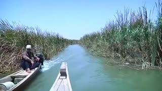 Iraqi marshes face environmental crisis - Video