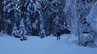 Collab copyright protection - skiing round corner fall down - Video