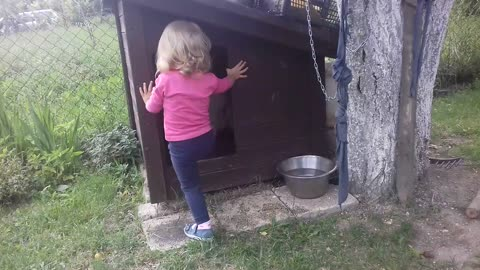 Puppy shares doghouse with toddler best friend