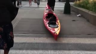 Guy in red dragging red kayak through metropolitan city streets - Video