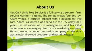 Tree Removal Services in Fairfax VA - Video