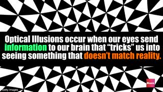 Cool Optical Illusions | Rare News - Video