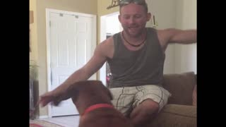 Owner learns why he shouldn't tease his dog - Video