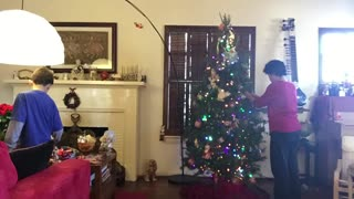 Stop motion Christmas Tree decorating! - Video