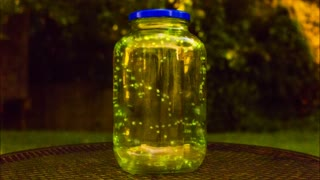 A Jar of Natural Light - Video