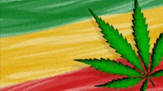 Reggae Time! - Video