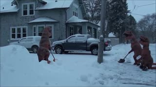 T-Rex Snow Removal Service - Video
