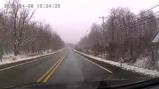 Suicidal Deer Barrel Rolls - Video